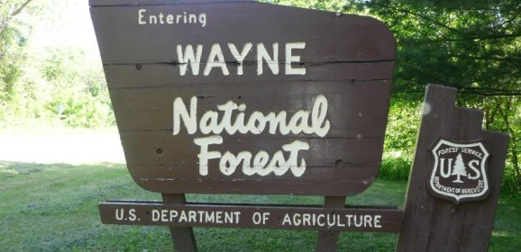 wayne-national-forest-578x280